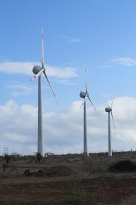 Wind turbines powering the airport