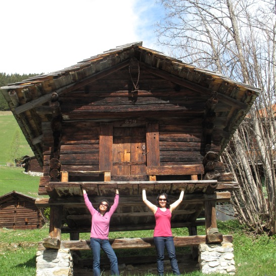 Holding up the shed near Gimmewald
